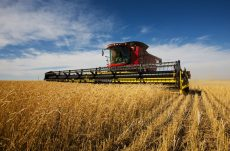 Chinese Investors Looking for Agricultural Opportunities in Australia
